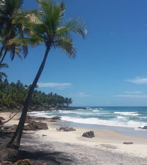 O que fazer na Bahia?